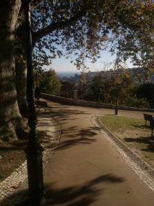 Jardim do Torel view of Baixa
